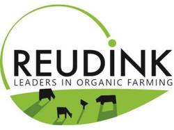 Reudink logo 1