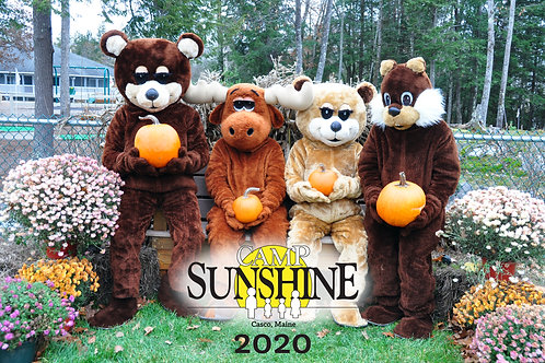 Camp Sunshine Puzzle