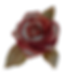 Rose%25202_edited_edited.png