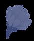 Blue%2520Flower_edited_edited.png