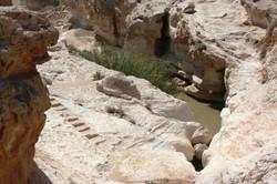 פתחה המשני של המערה ברקע בריכת עין יורקעם