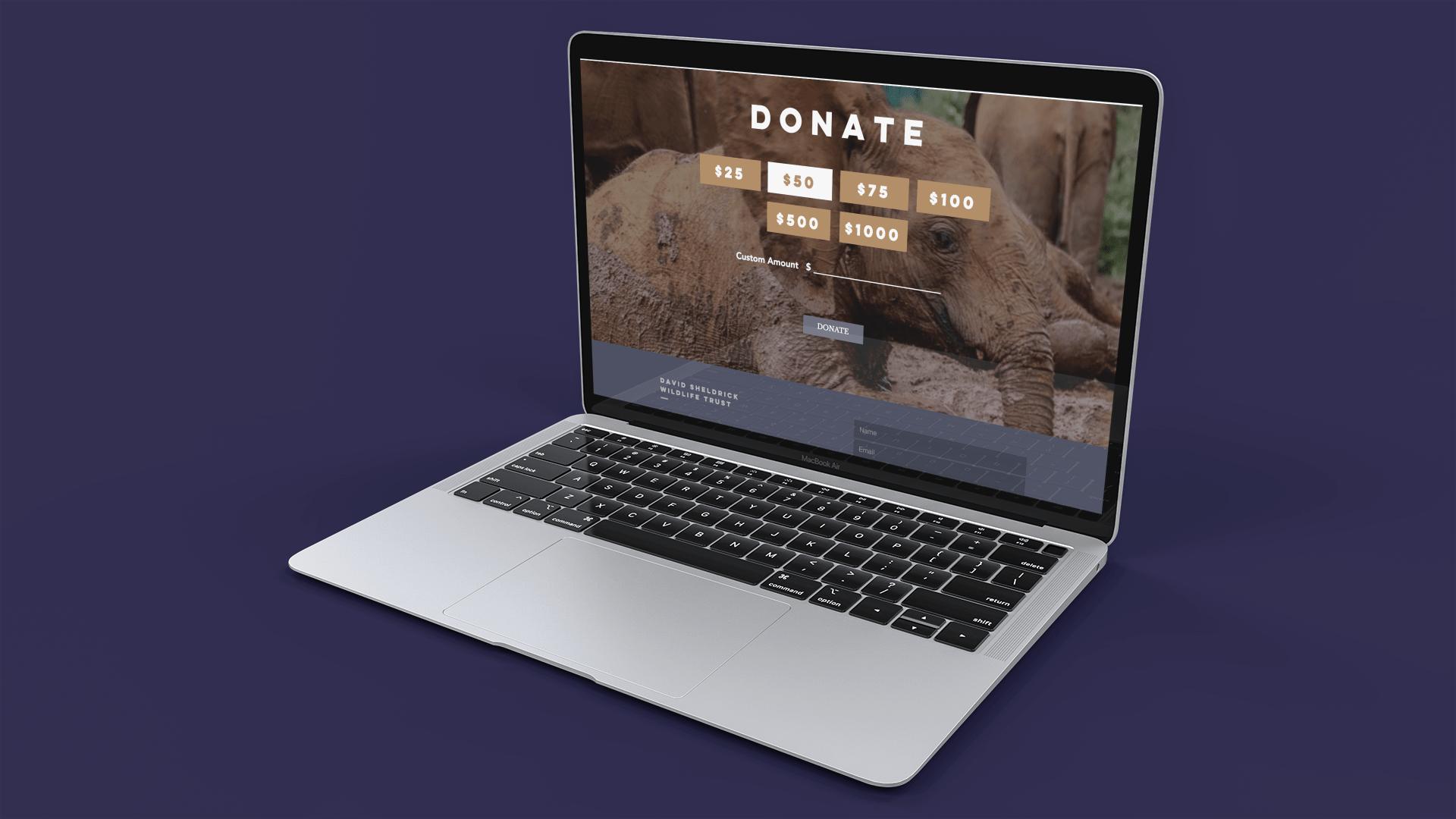 David Sheldrick Wildlife Trust-min.png