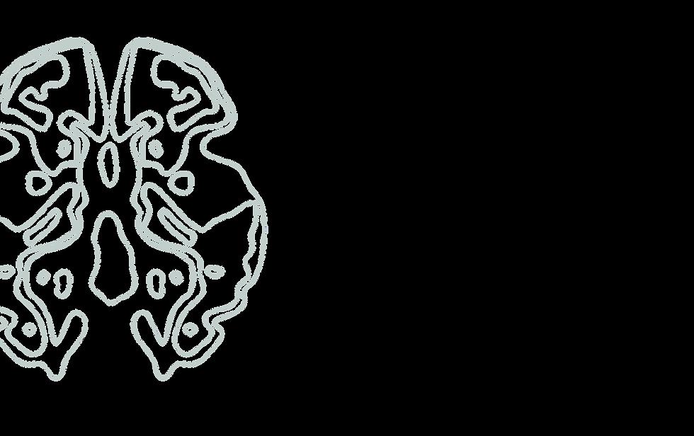 BrainSlice-27.png