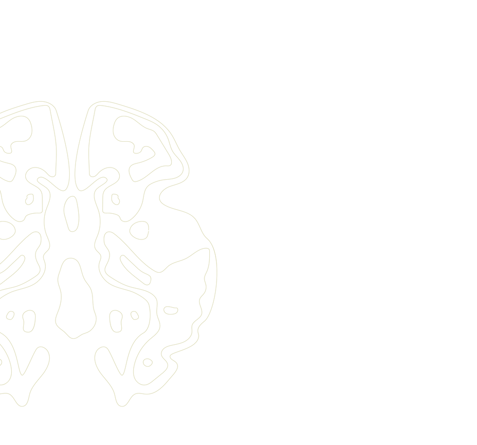 BrainSlice_Strip_TransparentOlive-17-17-
