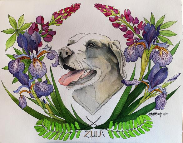 portrait of Zula