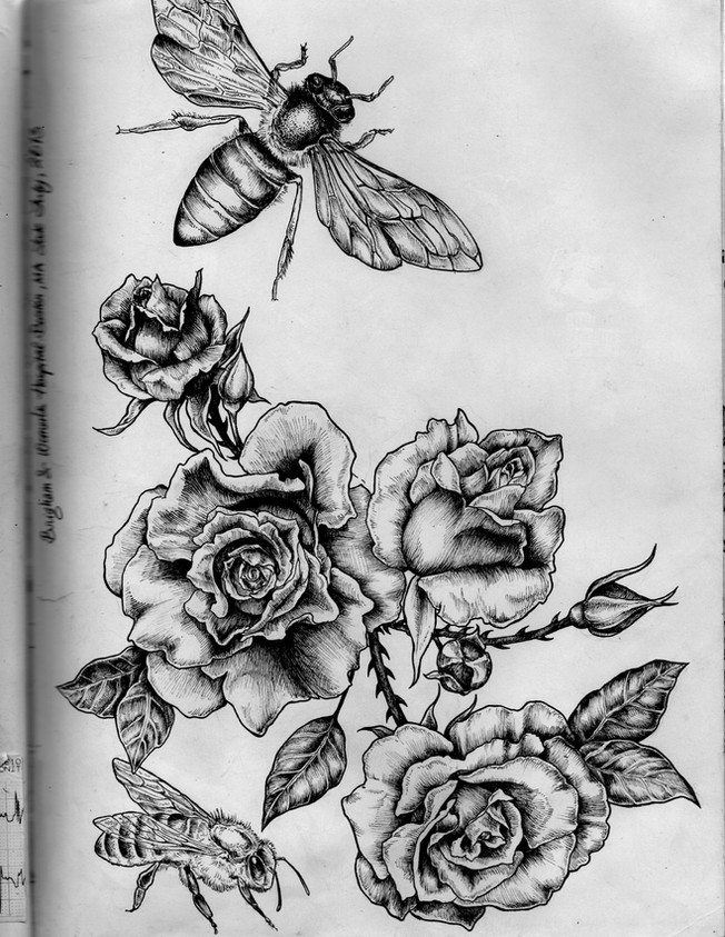 sketch book: roses& bees. Boston,MA. July 2013