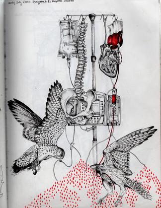 sketch book: kestrel IV pole. Boston, MA. July 2013