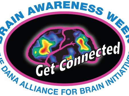 Brain Awareness Week at ICMAB's website