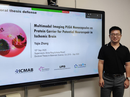 Yajie Zhang defends his PhD thesis on nanomaterials with great success