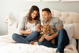 New Jersey Car Insurance and Home Insurance