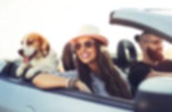 Home & Auto Insurance Lyndhurst New Jersey