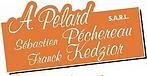 Logo Pelard Kedzior.png
