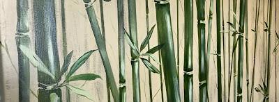 Bamboo Guest Bath