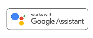 google_assistant.png