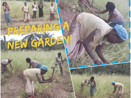 A New Garden!!