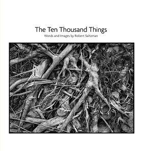 cover_Ten Thousand Things_illustrated.jp