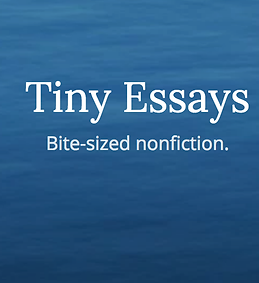 tiny essays.png