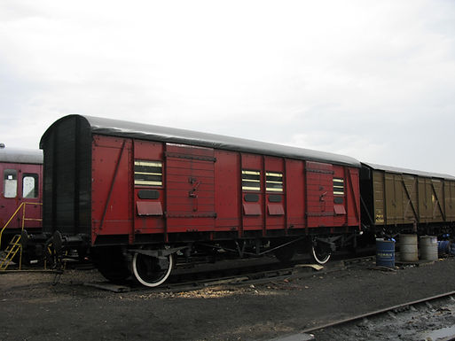 CCT S1439