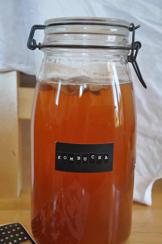 Homemade Kombucha Foodie in Provence