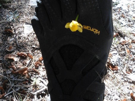 Why I wander around (almost) barefoot