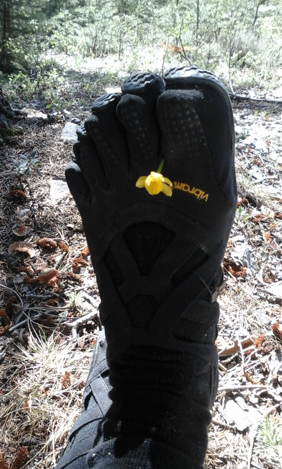 Foodie in Provence in Vibram Five Fingers