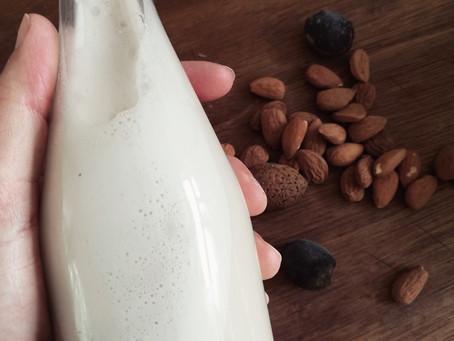Dairy Free Milks 101