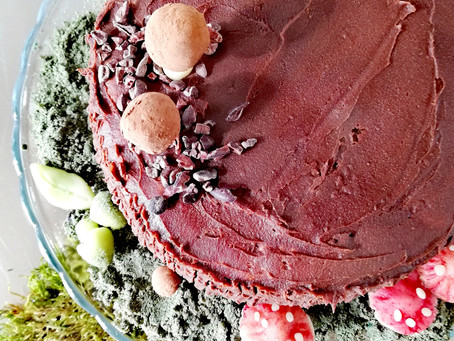 Einkorn Sponge Cake with Chocolate Ganache (dairy free, wheat free)
