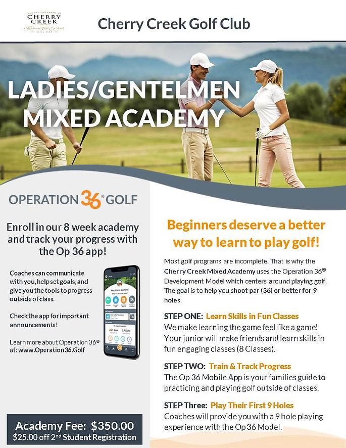 Mixed Adult Academy Program Flier 2020 f
