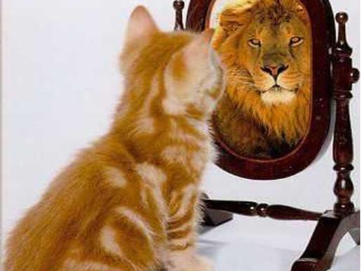Acredite em si mesmo, mas prepare-se antes.