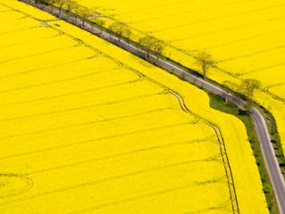 Asesoramiento de adquisición de suelos