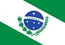 220px-Bandeira_do_Paraná.svg.png