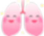 kisspng-organ-lung-respiratory-system-br