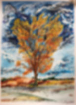 A Special Tree - Water Colour by Duru Gu