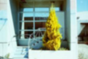 PICT4628.JPG