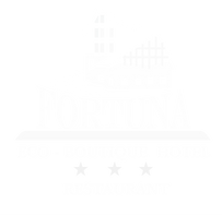 logo - Fortuna.png