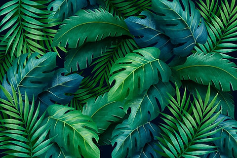 tropical-green-leaves-background_52683-3