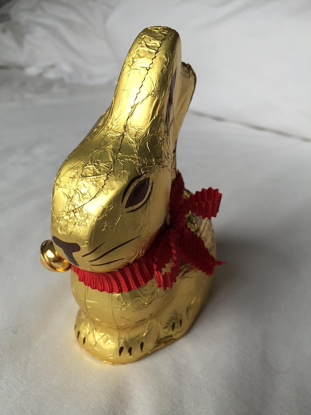 Easter Bunny IMG_2835_edited.JPG