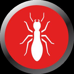Free Termite/Pest Assessment