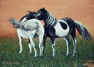 《两匹马》