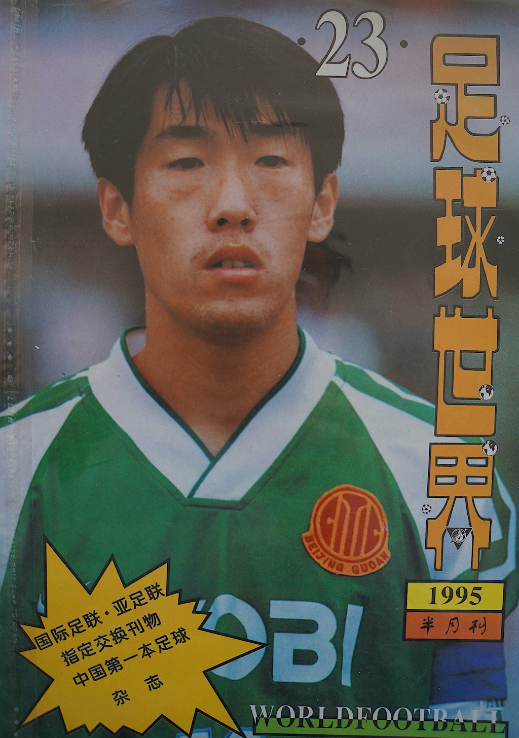 World Football 1995
