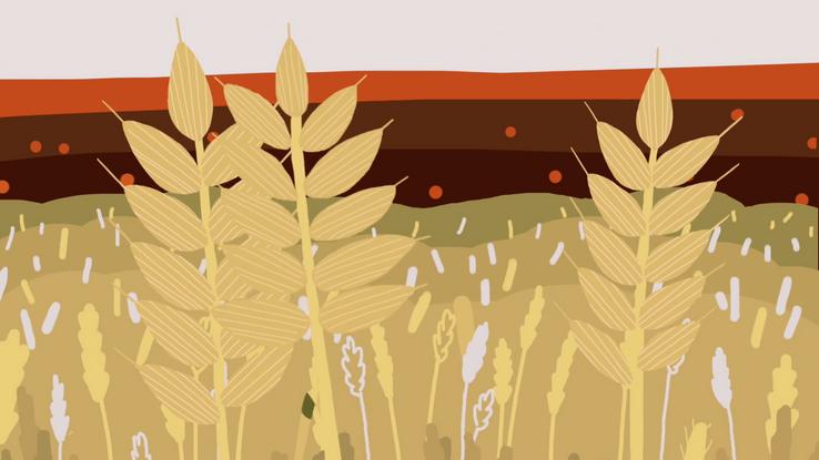 Crop Trust - Genebank Platform