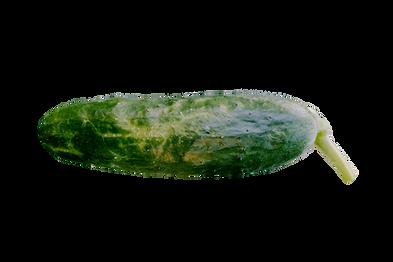 cucumber_edited.png
