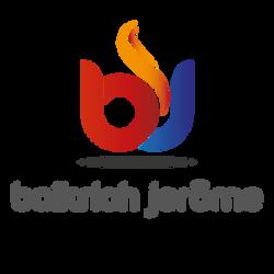 logo-baikrich.png