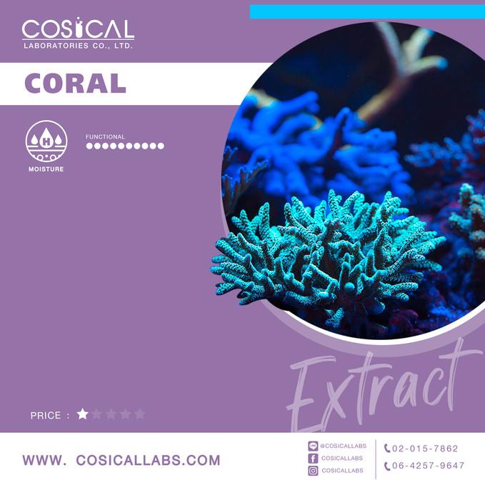 33_ปะการัง.jpg