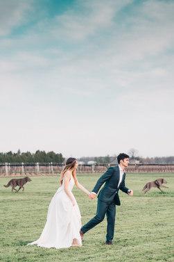 Niagara Bridal Editorial
