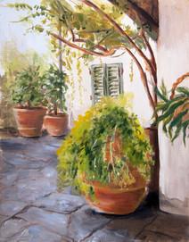 Italy: Palmerino No.3, Florence
