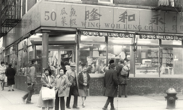 Wing Woh Lung Co. at 50 Mott Street