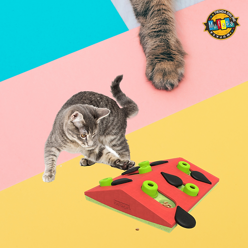 MELON MADNESS PUZZLE & PLAY - GATO