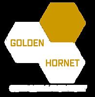 Golden Hornet Branding Preview