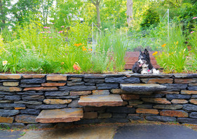Dry laid Goshen stone wall and stile steps, pollinator planting (raised bed by Green City Growers)